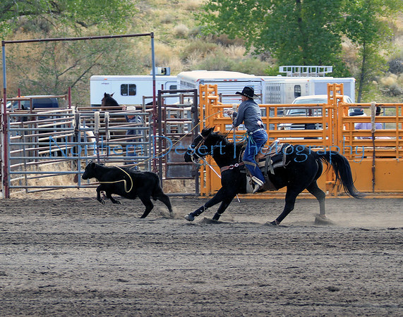 Nevada Day Rodeo ~ 2010
