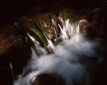 Cascade in a forest creek