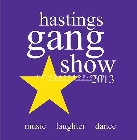 Gang Show 2013