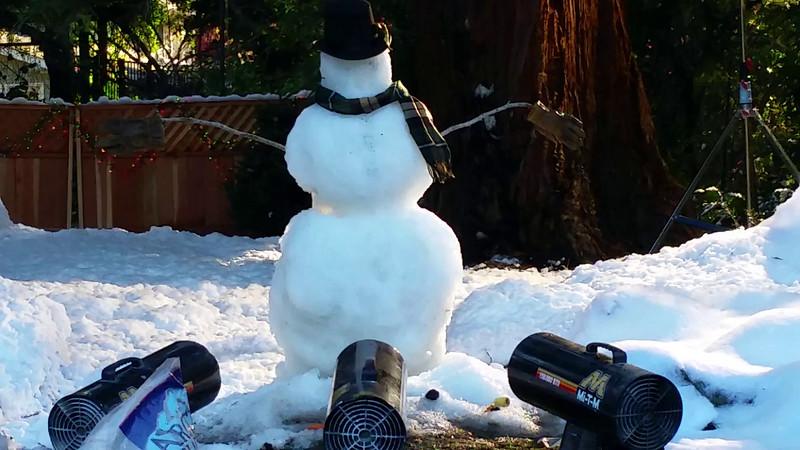 Vida Snowman