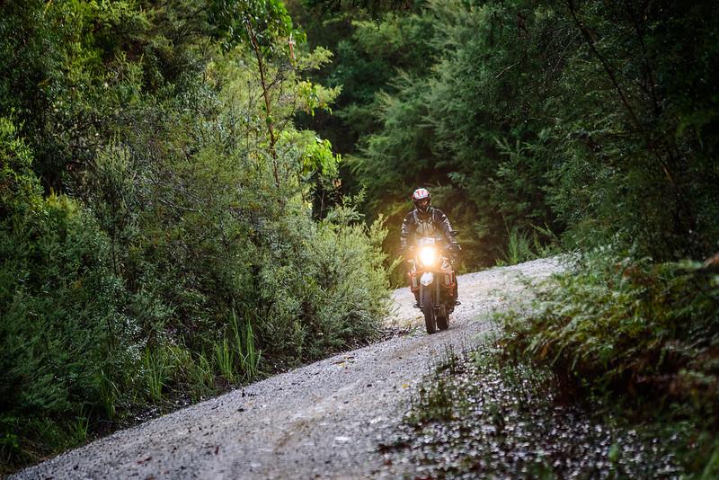 2019 KTM Australia Adventure Rallye (161).jpg