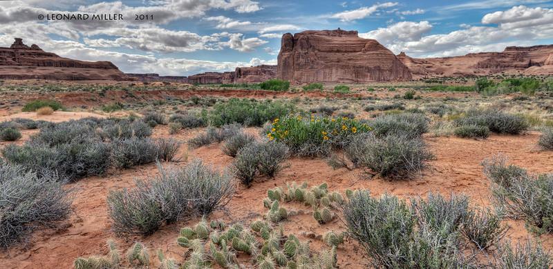 Desert Solitude - Utah