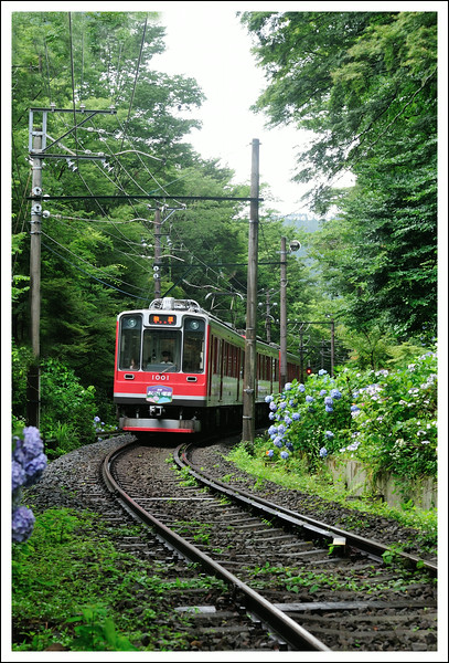 The Tozan Densha  (mountain climbing train)