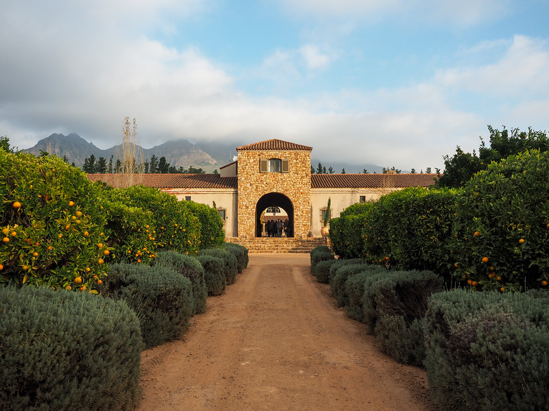 Waterford Estate winery in Stellenbosch, South Africa