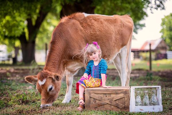 Cow mini March 2021 - DiNardo