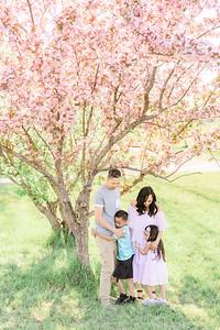Palma Family - Cherry Blossom Mini Session 2020