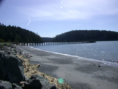 On the Beach - Pacific Northwest, April 8, 2005