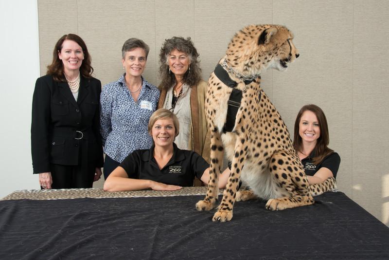 Cheetah.org 2012