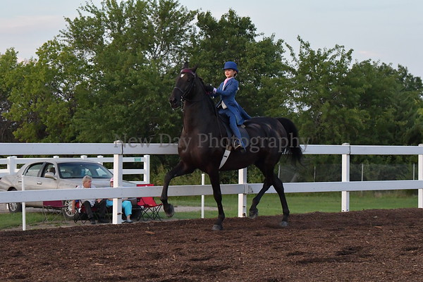 46. WT Equitation 12 & U, English & Western