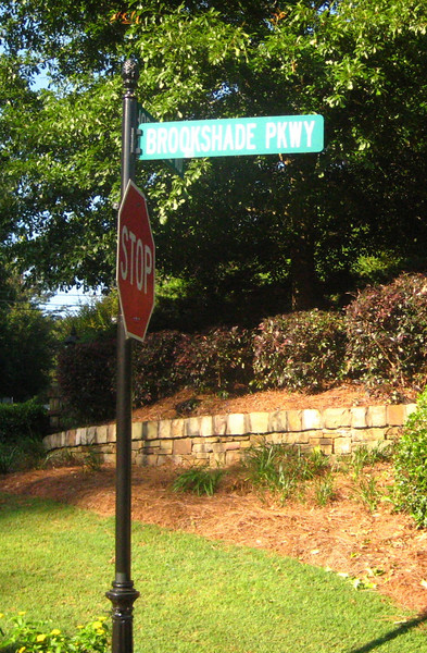 Brookshade Community Of Homes Milton GA (4).JPG