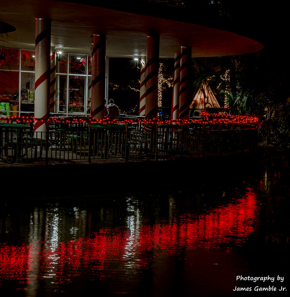 Houston-Zoo-Lights-3159.jpg