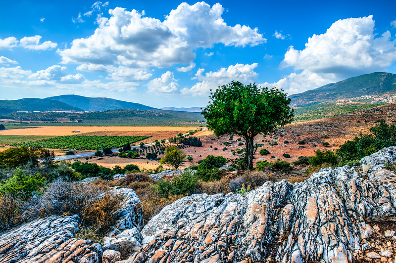 Israel-7422_4_5_6_7_8-HDR1.jpg