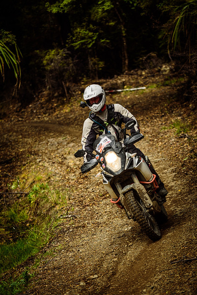 2019 KTM New Zealand Adventure Rallye (1328).jpg