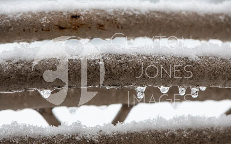 wf_backyard_snow_9.jpg