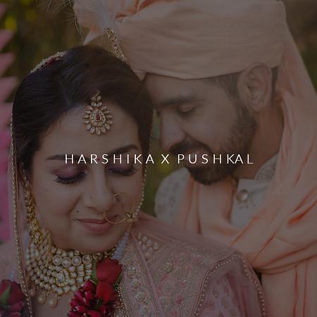 Harshika X Pushkal