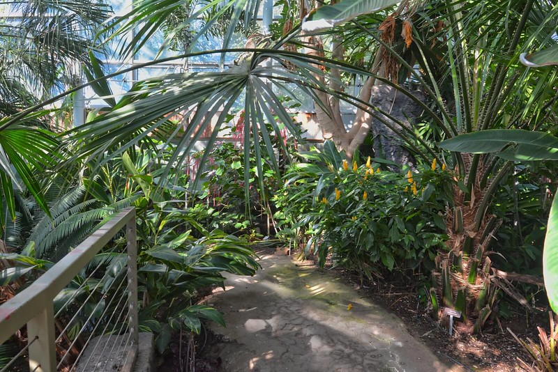 Mary E. Bivins Tropical Conservatory