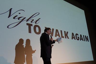 Night To Walk Again 2012