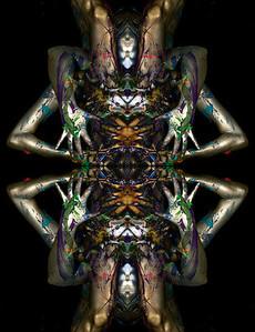 Transflexions