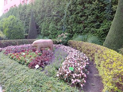 Wroclaw, Poland - Botanical Garden