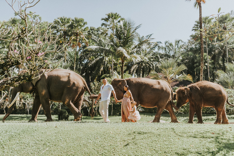 VTV_family_photoshoot_elephants_Bali_ (45).jpg