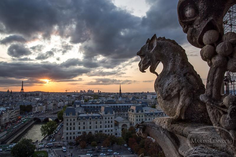 Notre Dame, Paris-28.jpg