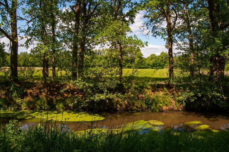 GrensPark Kempen~Broek, omgeving Stramprooierbroek & St.-Maartensheide 07.jpg