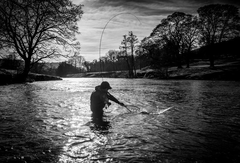 River Derwent action