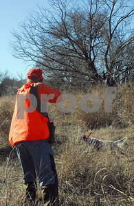 hunters-should-have-a-shot-at-wild-quail