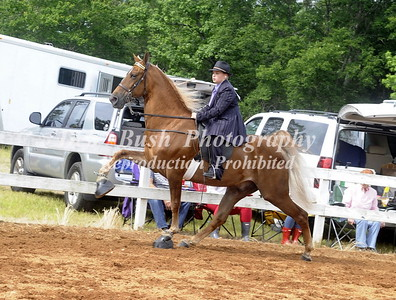 CLASS 9  YOUTH WALKING HORSE SPEC