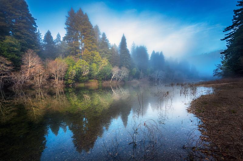 Gualala River Mist