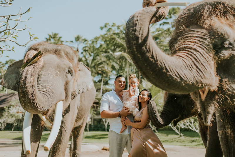 VTV_family_photoshoot_elephants_Bali_ (19).jpg