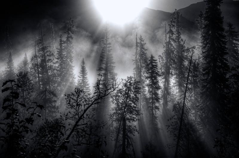 Banff to Jasper -246_7_8_9_tonemapped.jpg