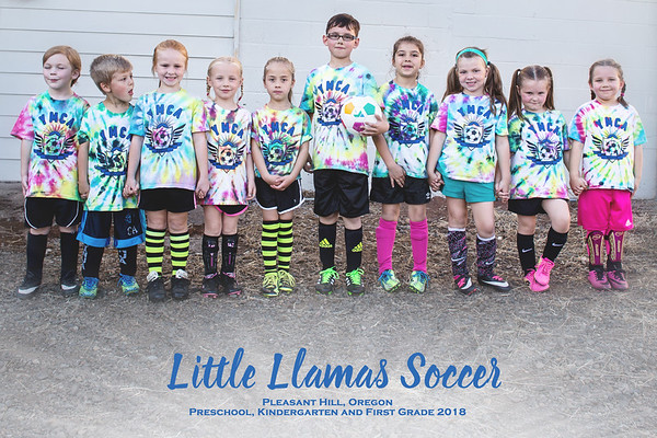 PH Little Llamas Soccer