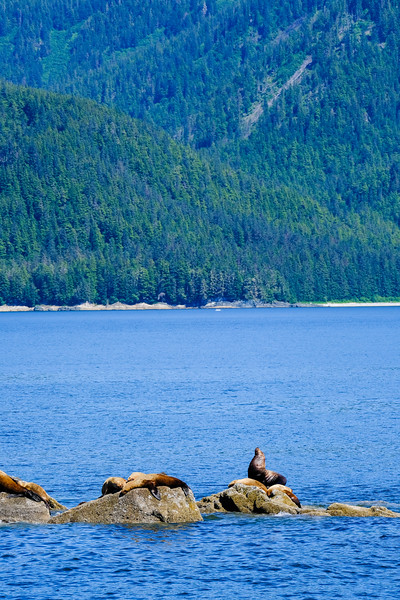 Alaska Cruise-9191.jpg