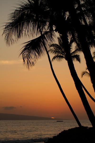 Hawaii2012-1563.jpg