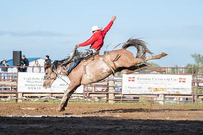 Dupree Bronc Stompin' on the Prairie