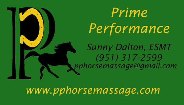 Prime Performance Equine Sports Massage Therapy