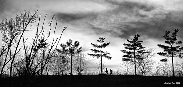 Malden Park - Windsor, Ontario, Canada