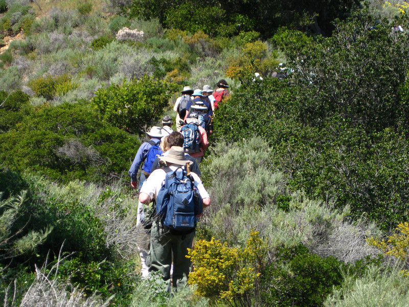 Sierra Club members following the guuide on the trail.