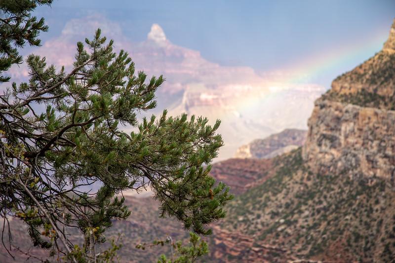 Grand Canyon-4986.jpg