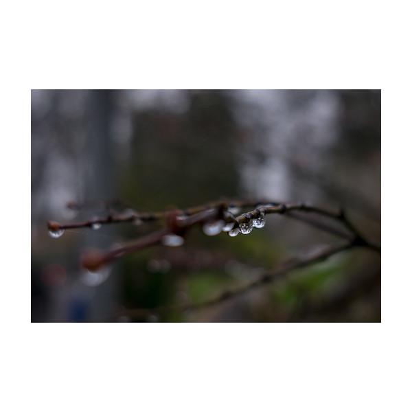 325_Raindrops_10x10.jpg