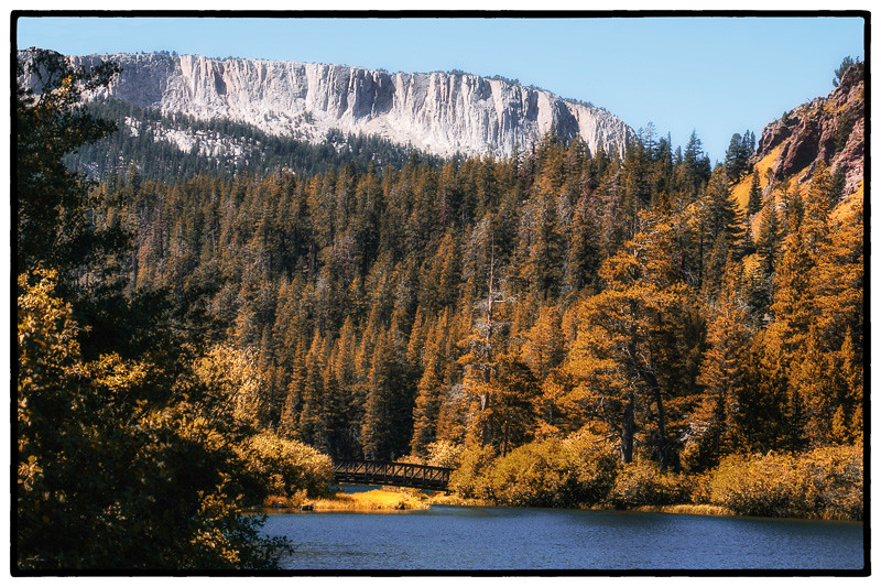 September 1 - Fall foliage of our dreams, Mammothg Crest, Mammoth Lakes, CA.jpg