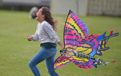 Kite Day 2019
