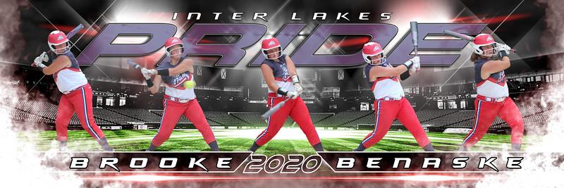 2020 Baseball Panoramics