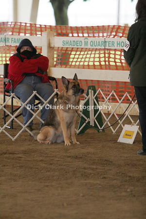 Rally Obedience Trials