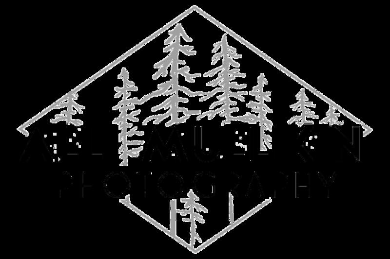 AMP Logo 2020 Light Grey Edit 2.png