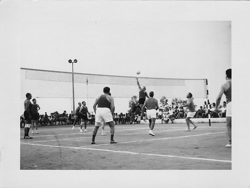 Voleibol Laranjo.jpg