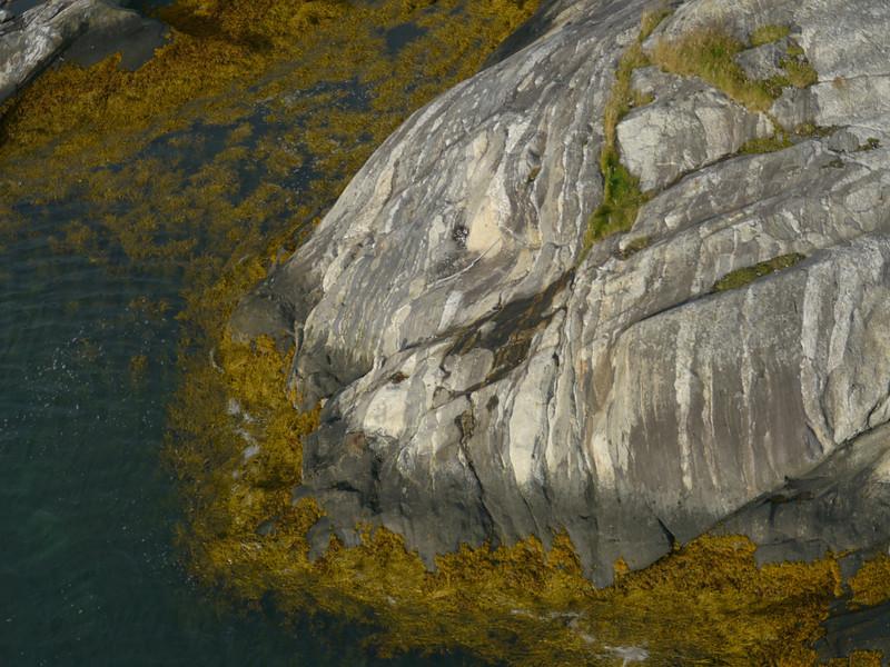 auf der Küstenstrasse von Mo I Rana nach Bodø / @RobAng 2012 / Skålsvik, Nygårdsjøen, Nordland, NOR, Norwegen, 1 m ü/M, 07.09.2012 08:24:19