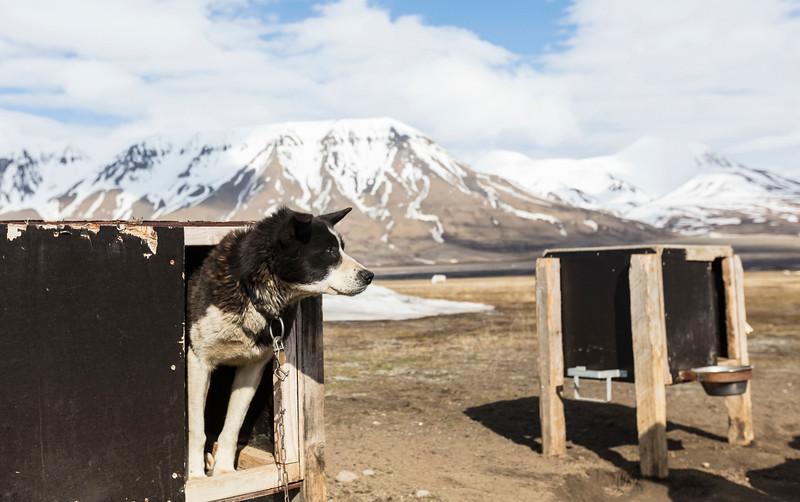 Inspirato-Arctic_Expedition18-02-Longyearbyen-0055.jpg