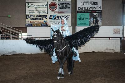 Alice Smith's Pegasus